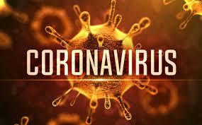 coronavirüsgümrükkodları.jpg